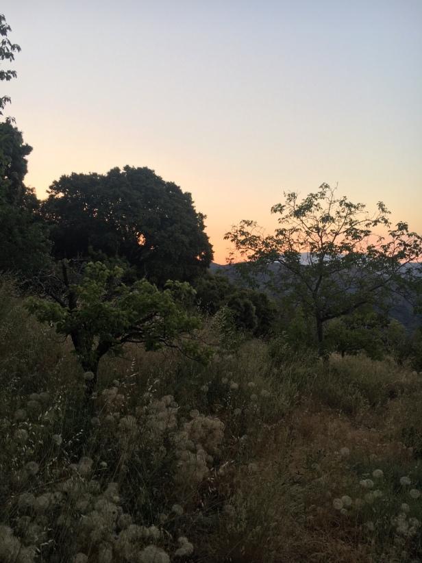 Auringon nousu, La Taha, Sierra Nevada, Andalucia, Espanja, Corijo Prado Toro